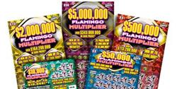 Woman claims top prize of $500,000 with the New Flamingo Multiplier Game!