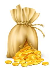 sack with money-image